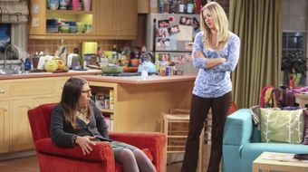 Assistir The Big Bang Theory T5E2 The Infestation Hypothesis no Warner HD 24/01/2021 às 00:27