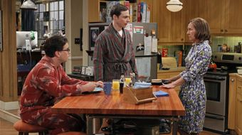 Assistir The Big Bang Theory T5E6 The Rhinitis Revelation no Warner HD 24/01/2021 às 10:37