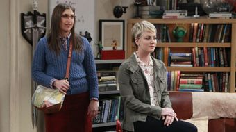 Assistir The Big Bang Theory T8E12 The Space Probe Disintegration no Warner HD 17/04/2021 às 17:50